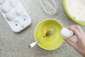 Track your Eggs via the Internet!
